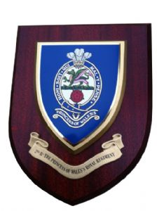 2nd Bn Princess of Wales Royal Regiment Welsh Military Wall Plaque Shield